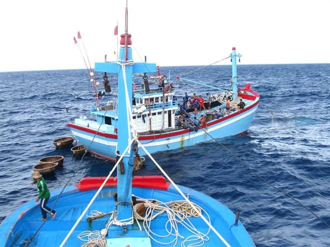 Lượng tàu cá bị nước ngoài bắt giữ, xử lí vi phạm đã giảm mạnh thời gian gần đây