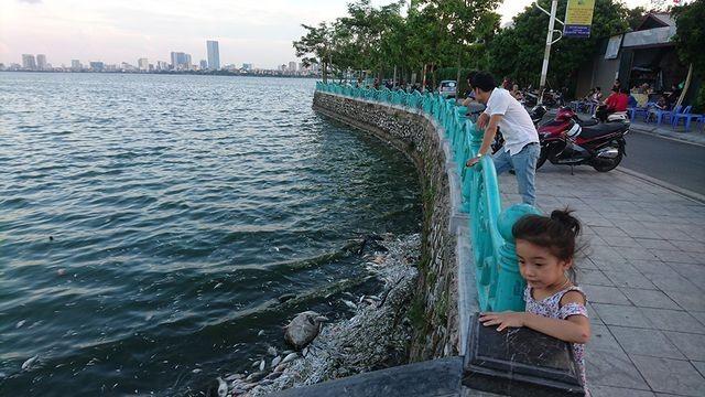 Công ty Thoát nước Hà Nội đang đề xuất lấy nước sông Hồng làm sạch Hồ Tây