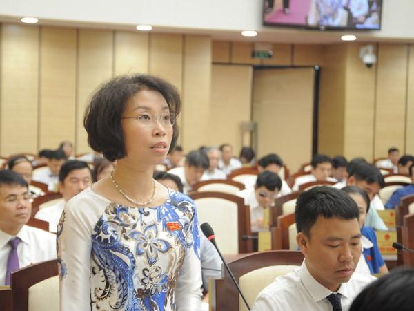 ĐB Phạm Thị Thanh Mai góp ý cho kế hoạch phát triển kinh tế - xã hội