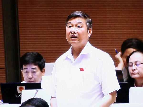 ĐB Nguyễn Sơn - Phó Chánh án TAND tối cao phát biểu