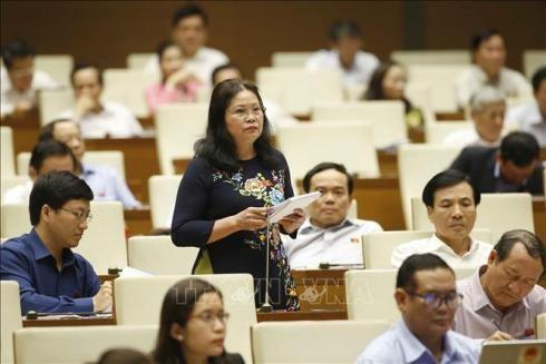 Đại biểu Trần Thị Dung (đoàn Điện Biên) phát biểu thảo luận