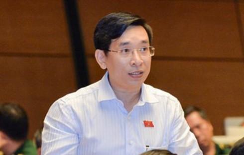 Đại biểu Nguyễn Văn Cảnh (đoàn Bình Định)