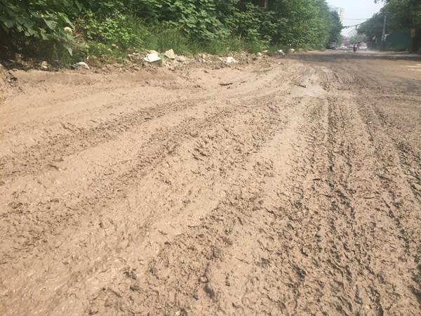 Ngày nắng cũng như ngày mưa, đường Nguyễn Cảnh Dị thường xuyên lầy lội, bẩn thỉu