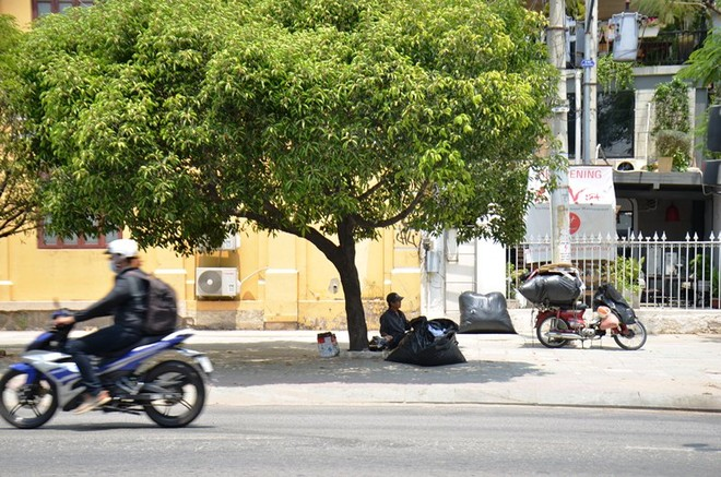 Một người đàn ông núp cái nắng rát da bằng cách ngồi dưới bóng râm của cây xanh ở quận 1.