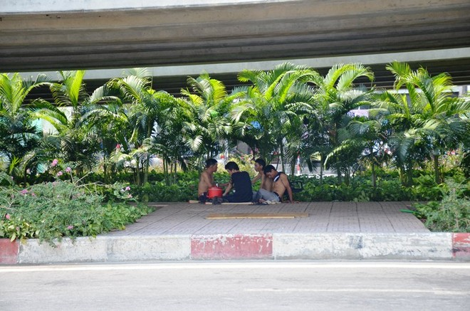 """Nắng nóng như """"lò bát quái"""" ở TP. Hồ Chí Minh ảnh 6"""
