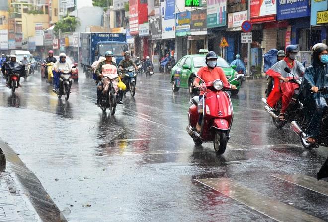 """""""Cơn mưa vàng"""" giải nhiệt oi bức ở TP. Hồ Chí Minh"""