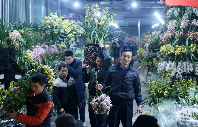 Tao nhã thú chơi hoa và cây cảnh của người Hà Nội ảnh 2