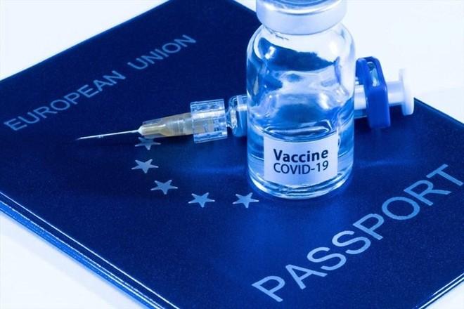 """Báo động """"hộ chiếu vaccine"""" giả tràn lan trên không gian mạng ảnh 1"""
