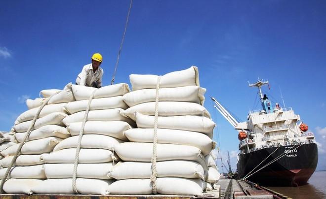 Bộ Nông nghiệp Mỹ dự báo Việt Nam tiếp tục đứng thứ 2 về xuất khẩu gạo ảnh 1