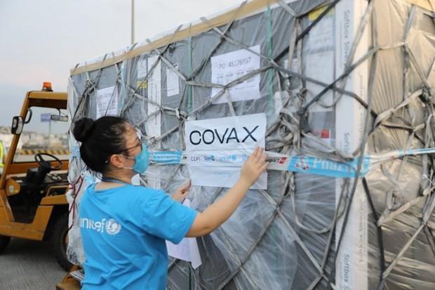 UNICEF hỗ trợ tối đa để Việt Nam tiếp cận các loại vaccine phòng dịch Covid-19 ảnh 1