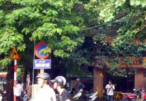 Đầu tư xây dựng đường Nguyễn Đình Chiểu kéo dài ảnh 1