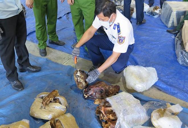 Bắt giữ vụ buôn lậu sừng tê giác, xương động vật quý hiếm với số lượng cực lớn ảnh 1