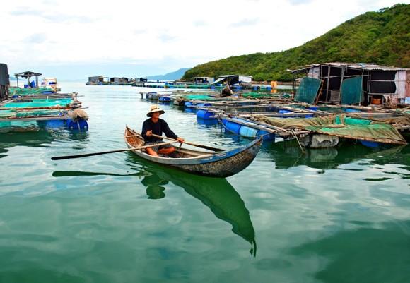 Trí Nguyên - Đảo xanh thanh bình ảnh 5