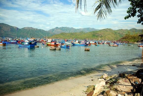 Trí Nguyên - Đảo xanh thanh bình ảnh 11