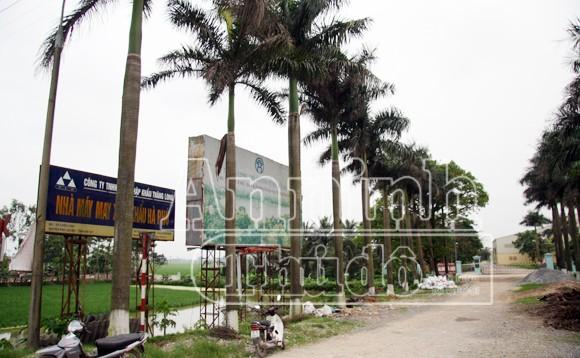 Hà Nội: Tàu hỏa đâm chết người, kéo lê hơn 30 mét ảnh 6