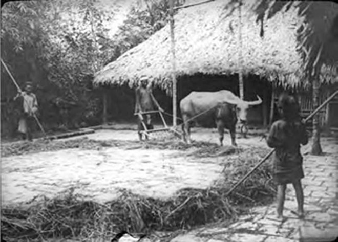 Công bố 2.000 tài liệu về Việt Nam từ thế kỷ 17 đến giữa thế kỷ 20 và mối quan hệ với nước Pháp ảnh 2