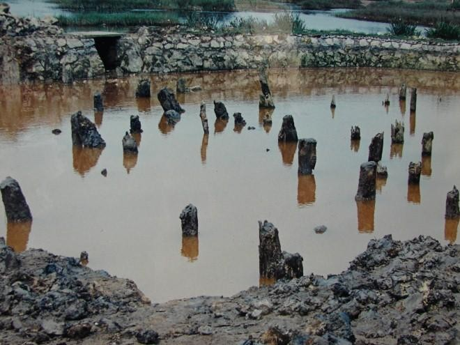 Thăm dò khảo cổ học tại di tích lịch sử Bạch Đằng ảnh 1