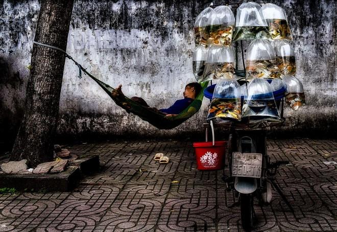 Nhiếp ảnh Việt Nam giành 2 huy chương quốc tế ảnh 1