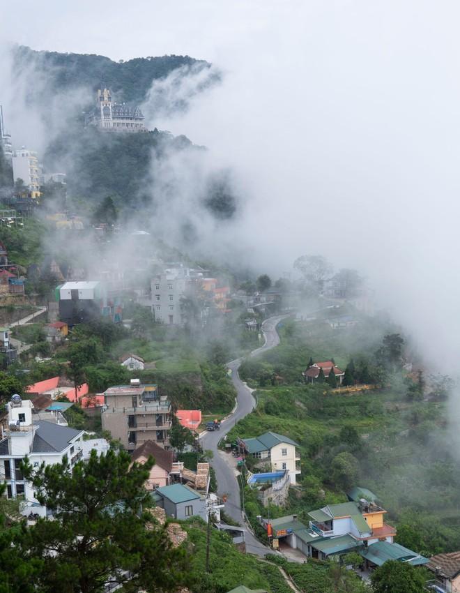 Đến Tam Đảo những ngày mờ sương, thả trôi tâm hồn vào sự thư thái ảnh 1