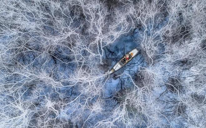 """""""Đánh cá ở rừng ngập mặn"""" đoạt giải Nhất cuộc thi ảnh quốc tế chụp từ trên cao ảnh 1"""