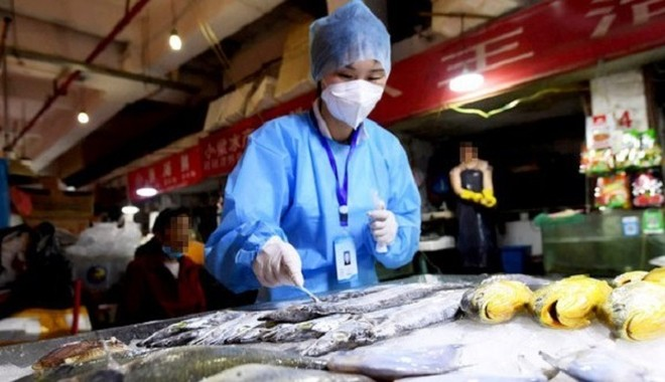 Mới: Thực phẩm nhập khẩu từ các nước có dịch Covid-19 phải xét nghiệm SARS-CoV-2 ảnh 1