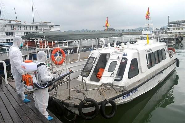 Hai thuyền viên người Việt của tàu Navios Marco Polo mắc Covid-19 ảnh 1