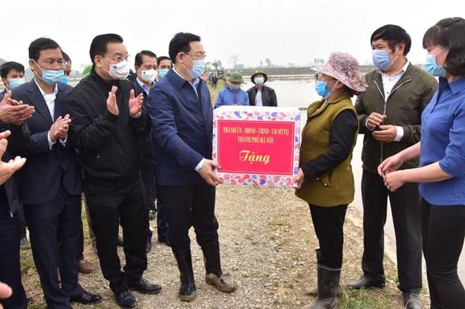 Bí thư, Chủ tịch Hà Nội cùng xuống đồng, đứng máy cấy lúa động viên bà con nông dân ảnh 3