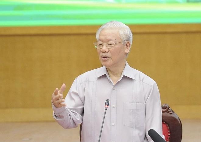 Tổng Bí thư Nguyễn Phú Trọng: Nếu trúng cử ĐBQH thì rất vinh dự, sẽ cố gắng hết sức mình ảnh 2