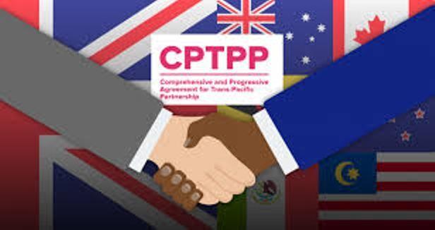 Đã có hiệu lực, CPTPP và EVFTA mang lại lợi ích kinh tế gì cho Việt Nam? ảnh 1