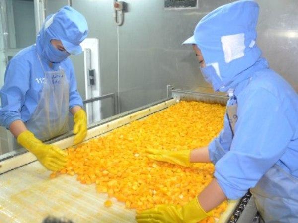 Cảnh báo doanh nghiệp xuất khẩu thực phẩm chế biến sang Hàn Quốc ảnh 1