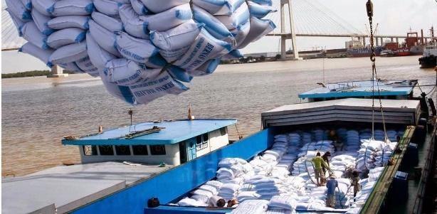 Xuất khẩu gạo của Việt Nam năm 2020 ước 6,15 triệu tấn ảnh 1