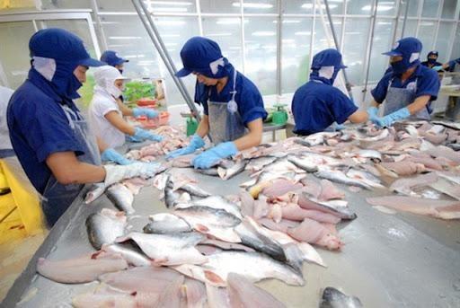 Campuchia sẽ xem xét lại quyết định tạm ngừng nhập khẩu 4 loại cá từ Việt Nam ảnh 1