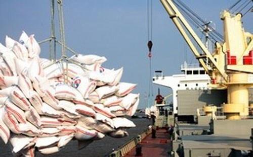 Giá gạo Việt Nam xuất khẩu tăng mạnh ảnh 1