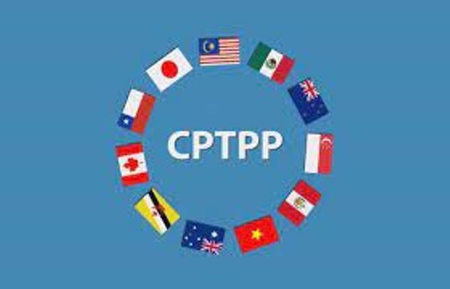 """CPTPP: Doanh nghiệp Việt Nam """"được nghe nói nhiều, nhưng biết không sâu"""" ảnh 1"""