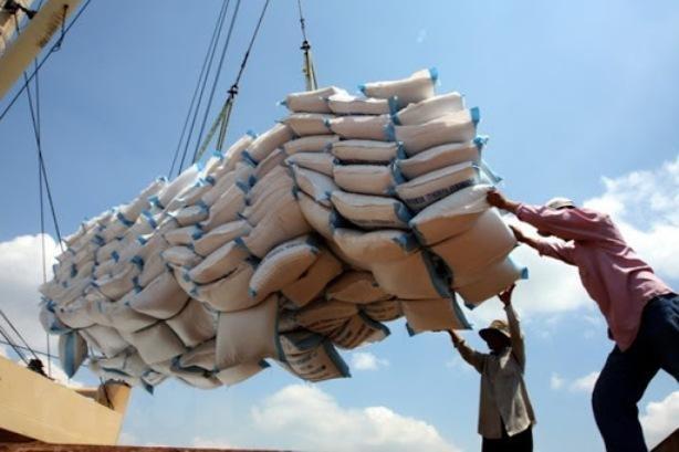 Xuất khẩu gạo sụt giảm ảnh 1