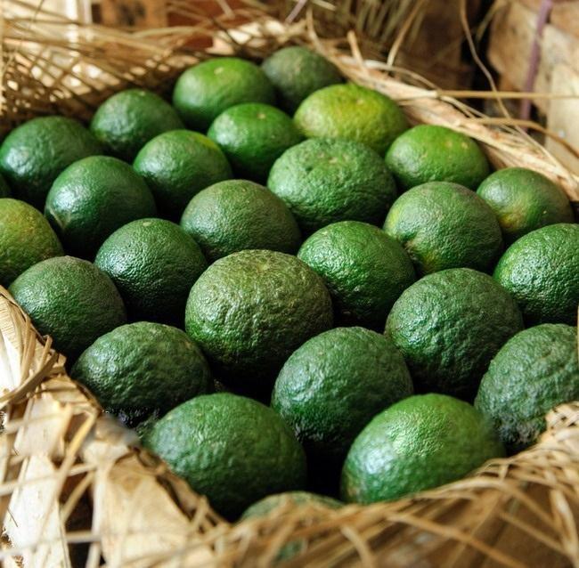 Algeria tiếp tục cấm nhập khẩu 13 loại trái cây ảnh 1