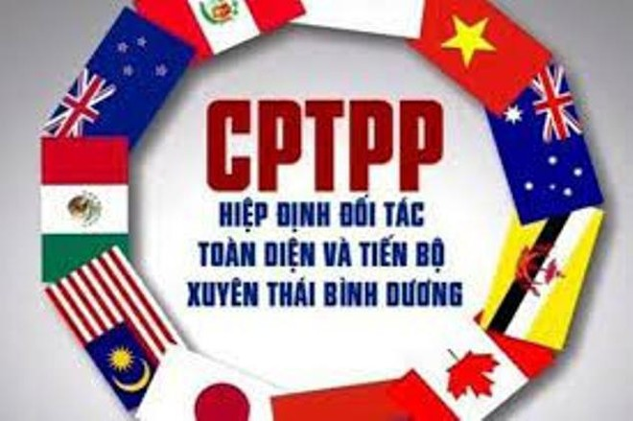Peru phê chuẩn CPTPP, Việt Nam được lợi gì? ảnh 1