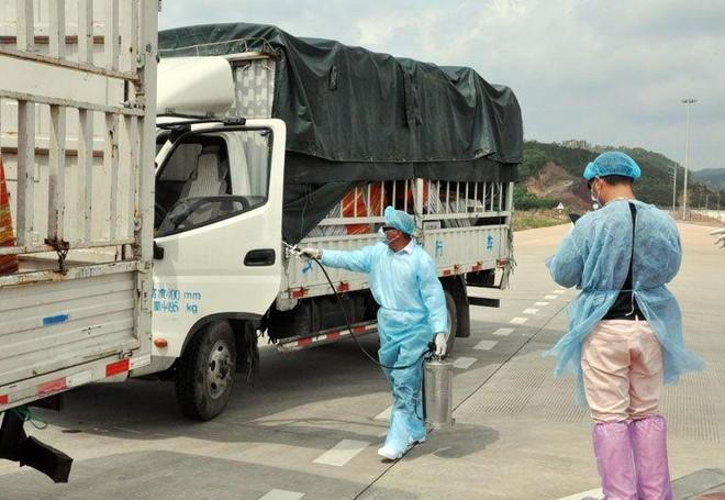 Bộ Công Thương thông tin về việc Trung Quốc tạm dừng nhập khẩu thanh long Việt Nam ảnh 1