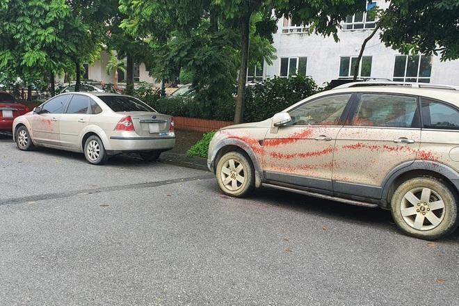 Xác minh làm rõ việc hàng loạt ô tô bị tạt sơn ảnh 1