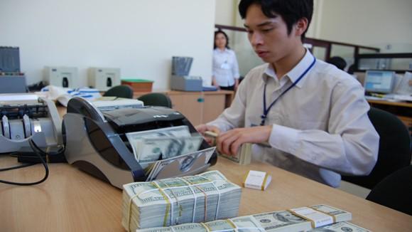 Thị trường tiền tệ diễn biến ổn định ảnh 1