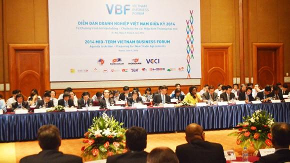 VBF: Sẵn sàng hỗ trợ tăng trưởng kinh tế của Việt Nam ảnh 1