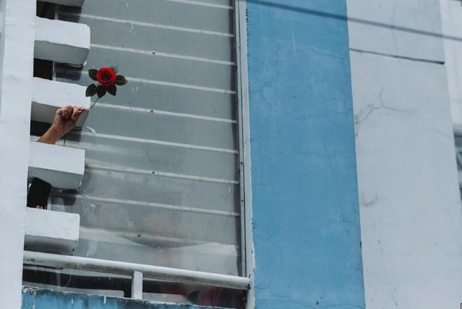 MC Quỳnh Hoa kể về bông hoa đặc biệt tại bệnh viện dã chiến TP.HCM ảnh 3