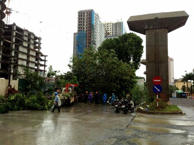 Bão Hải Yến quật ngã tháp truyền hình TP.Uông Bí cao 52m ảnh 2