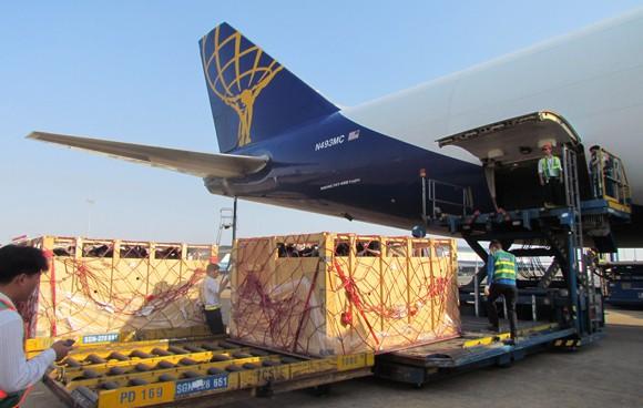 """200 con bò sữa """"cưỡi"""" phi cơ, đáp xuống phi trường Tân Sơn Nhất ảnh 2"""