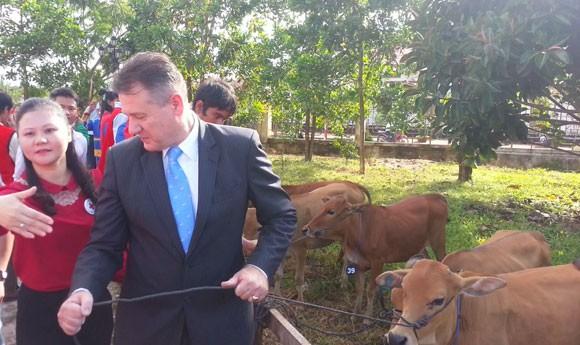 Prudential tặng bò cho 50 gia đình khó khăn ảnh 2