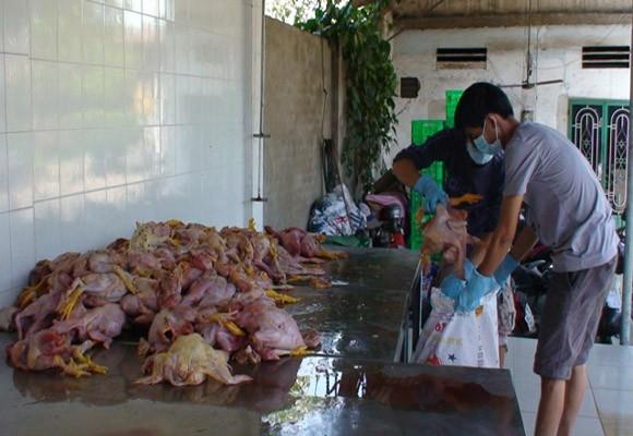 Sắp tết, thực phẩm bẩn liên tục tuồn về thành phố ảnh 1