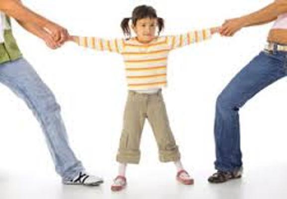 Tranh chấp kỳ lạ: Gia đình bên nội khai sinh đòi làm cha mẹ ruột của cháu ảnh 1