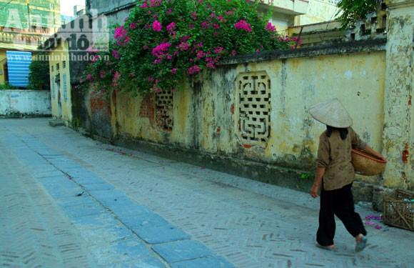 Vào làng Giầu xem con đường độc đáo bậc nhất Việt Nam ảnh 2