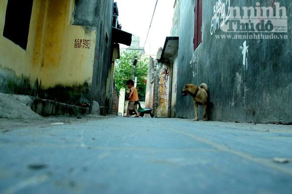 Vào làng Giầu xem con đường độc đáo bậc nhất Việt Nam ảnh 10