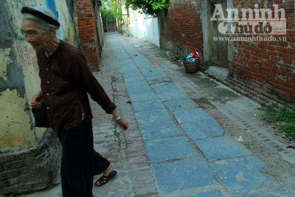 Vào làng Giầu xem con đường độc đáo bậc nhất Việt Nam ảnh 12